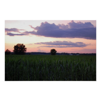 Sunset over the cornfield 7 By Peeka Print