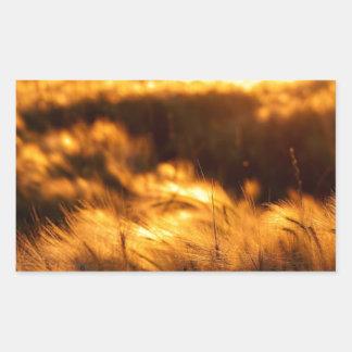 Sunset over the prairies in Saskatchewan Rectangular Sticker