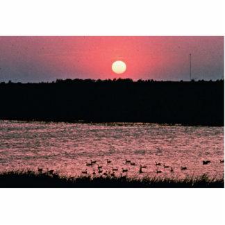 Sunset over Wetlands Photo Cutouts