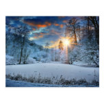 Sunset Over Winter Forest Lake Postcard