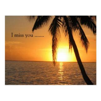 Sunset Palm Beach Peace Love Destiny Postcard