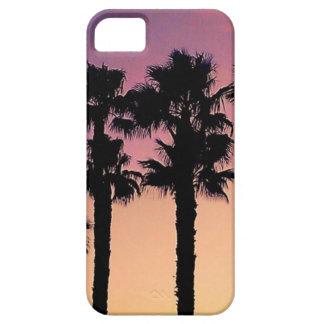Sunset palm dreams iPhone 5/5s case