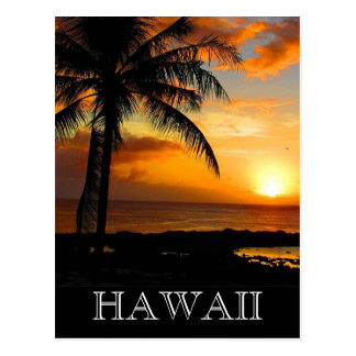 sunset palm hawaii postcard