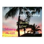 Sunset Palms Save the Date Postcard