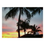 Sunset Palms Tropical Landscape Photography Poster