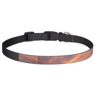 Sunset Pet Collar