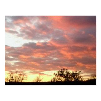 Sunset Photo Postcard