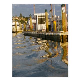 Sunset Pier Postcard