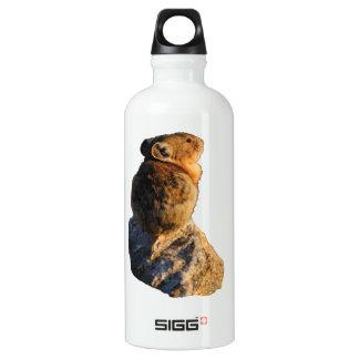 Sunset Pika SIGG Traveler 0.6L Water Bottle