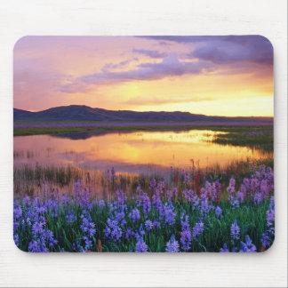 Sunset Prairie Scene Mouse Pad