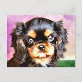 Sunset Puppy postcard
