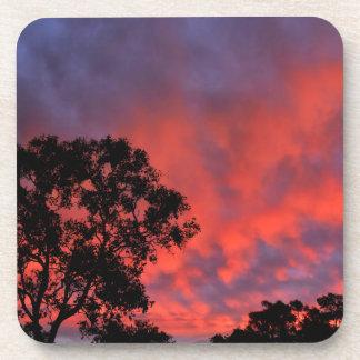 SUNSET QUEENSLANAUSTRALIA BEVERAGE COASTER