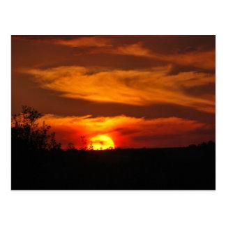 Sunset Reminder Postcard