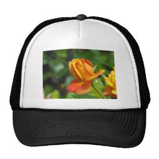 Sunset Rose Hat