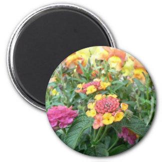 Sunset Rose Lantana Refrigerator Magnet