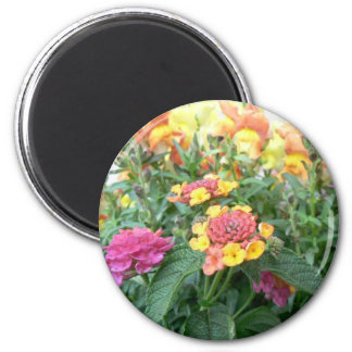 Sunset Rose Lantana Refrigerator Magnets