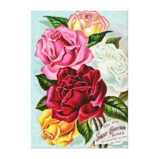 Sunset Roses Collection Vintage Advertisement Canvas Print