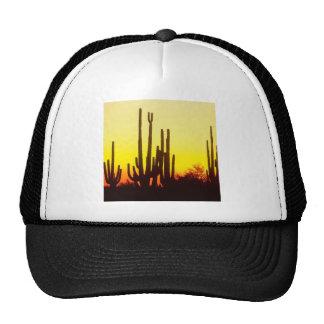 Sunset Saguaro Cactus At Trucker Hat