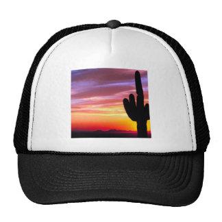 Sunset Saguaro Tonto Forest Trucker Hat