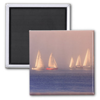 Sunset Sailboats Photo Refrigerator Magnets