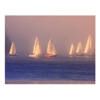 Sunset Sailboats Photo Postcards