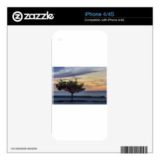Sunset Scene at Boardwalk in Montevideo Uruguay iPhone 4 Decal