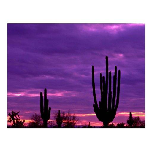 Sunset, Scottsdale, Arizona Postcards