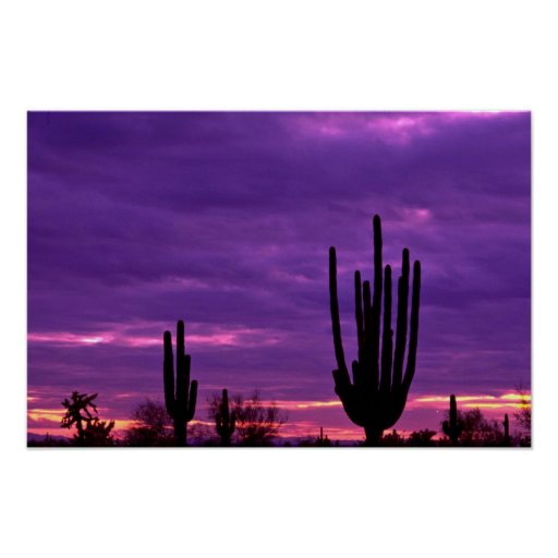Sunset, Scottsdale, Arizona Posters