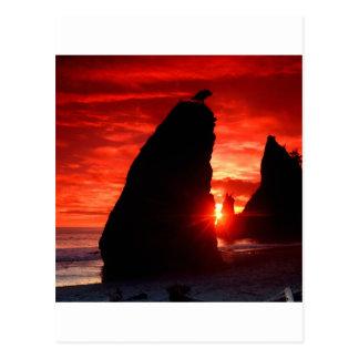 Sunset Sea Stacks Blood Red Postcard