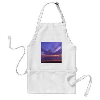 Sunset Seabright Santa Cruz California Adult Apron