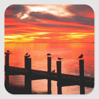Sunset Seagulls At Fort Myers Florida Square Sticker