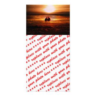 Sunset Seagulls - Love Birds on the Beach Photo Card