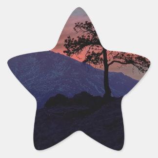 Sunset Sentinel Star Sticker
