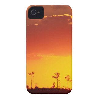 Sunset Setting Swampland Everglades Florida iPhone 4 Covers