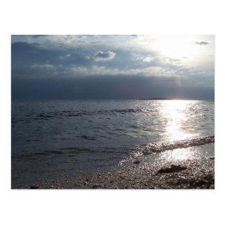 Sunset Shells Postcard
