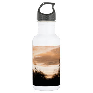Sunset Silhouettes trees Stainless Steel Water Bottle