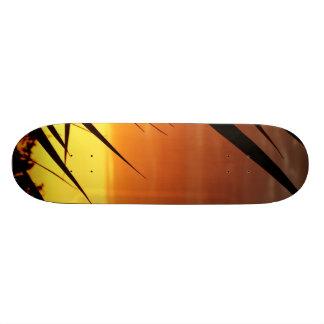 Sunset Skate Board Decks