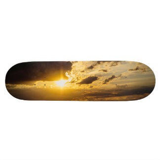 Sunset Skate Decks