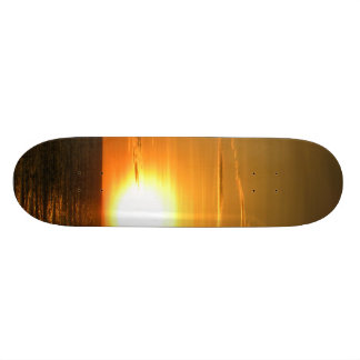 Sunset Custom Skateboard