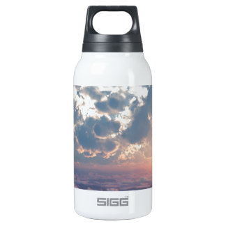 Sunset Skies Insulated Water Bottle