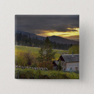 Sunset sky over vineyards and historic log cabin pinback button