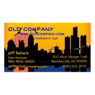 Sunset Skyline Double-Sided Standard Business Cards (Pack Of 100)