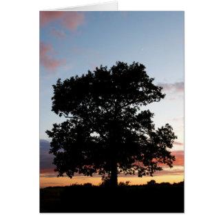 Sunset Sliver Greeting Card
