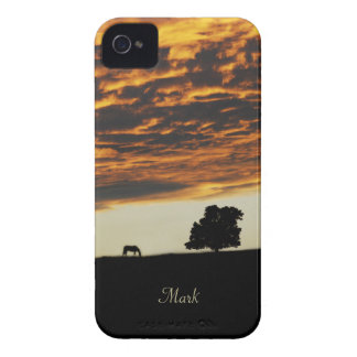 Sunset Solitude Blackberry Case