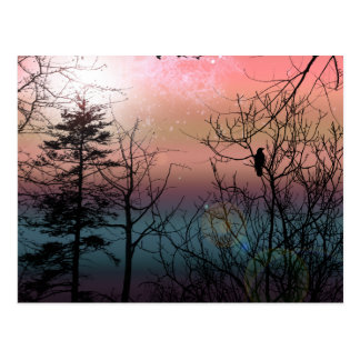 Sunset Solitude Landscape Signed Mini Print Postcard
