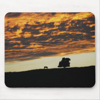Sunset Solitude Mouse Pads
