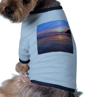 Sunset St Bees Footprint Pet Tee Shirt