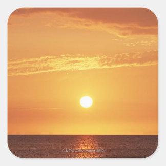 Sunset Square Sticker