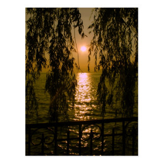 Sunset - Sunset postcard