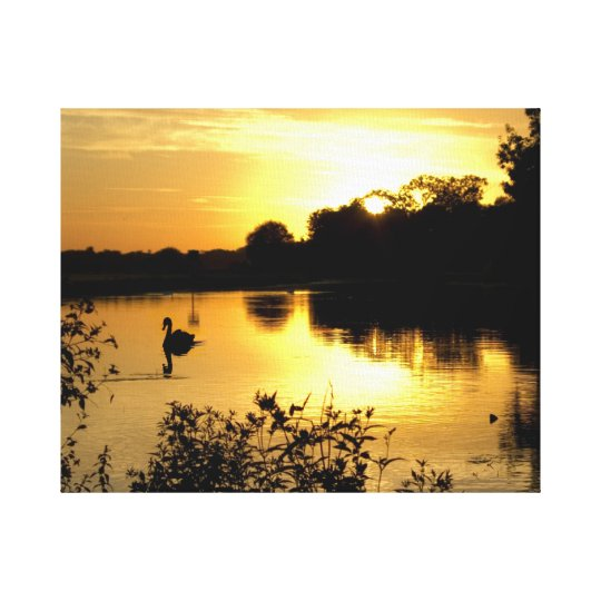 Sunset Swan Lake Canvas Print